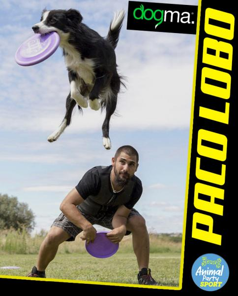 Animal Party Sport - PACO LOBO